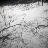18_scan2012471
