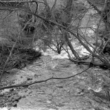 18_scan2012593